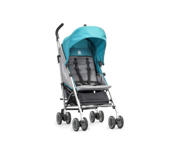 best-bargain-stroller-with-reversible-seats